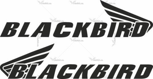 Наклейка Honda BLACKBIRD