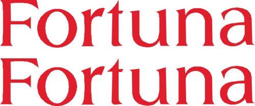 Наклейка логотип FORTUNA