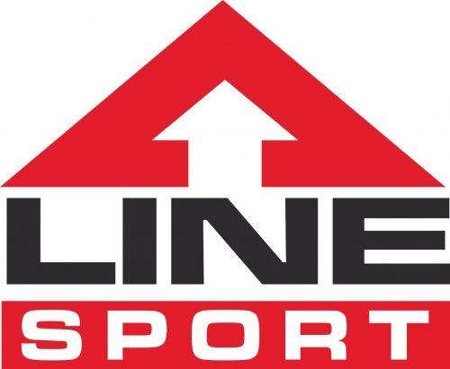 Наклейка логотип LINE-SPORT