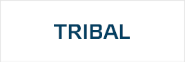 Наклейки Tribal
