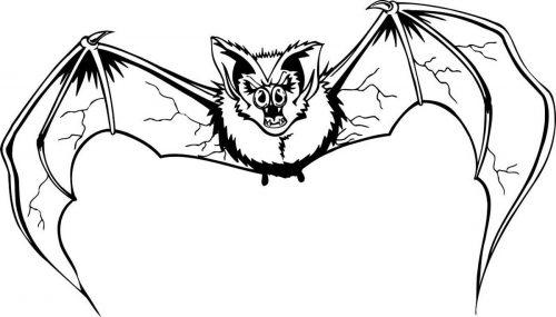 BAT-018