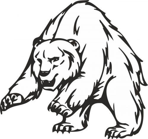 BEAR-013