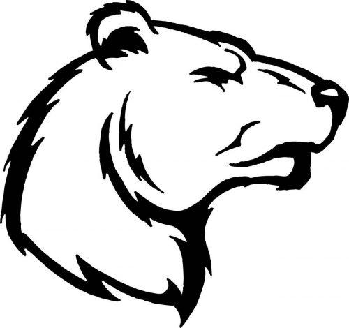 BEAR-019