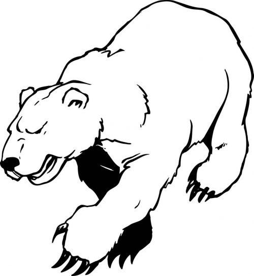 BEAR-023