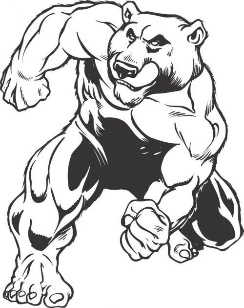 BEAR-041