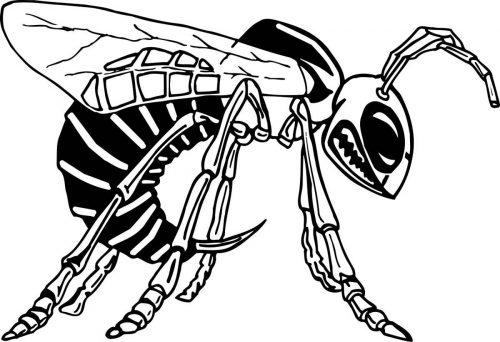 BEE-006