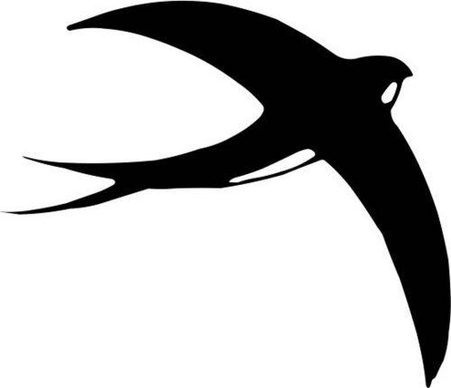 BIRD-009