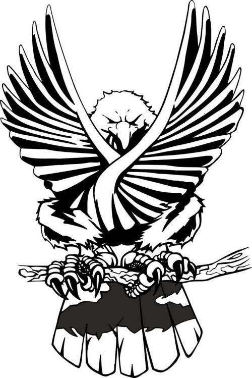 BIRD-FANTASTIC-181