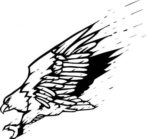 BIRD-FANTASTIC-185