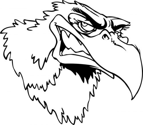 BIRD-FANTASTIC-192
