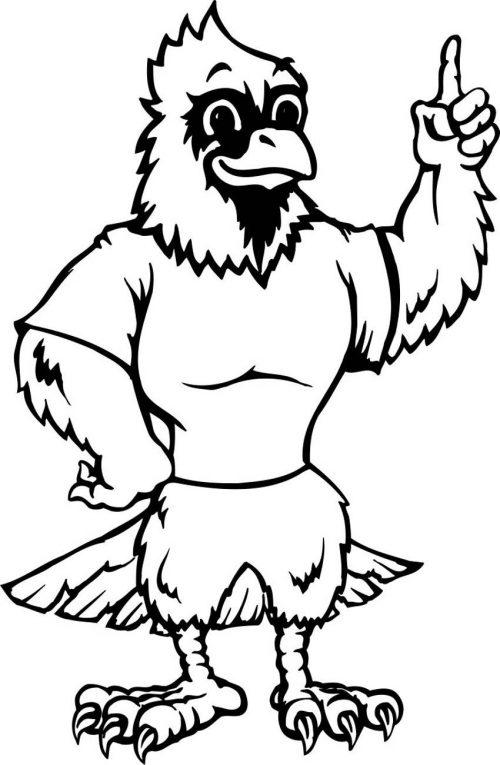 BIRD-FANTASTIC-208