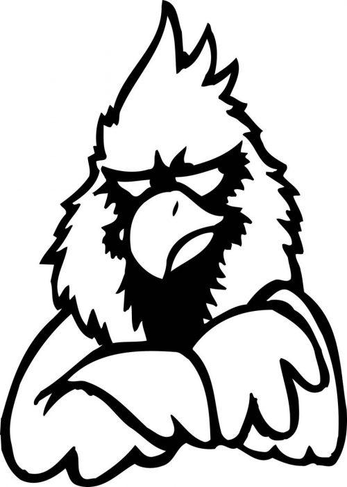 BIRD-FANTASTIC-209