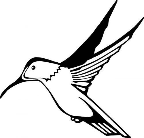 BIRD-012