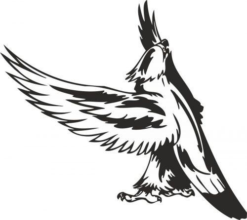 BIRD-PREDATOR-135