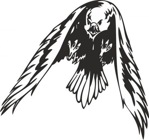 BIRD-PREDATOR-136