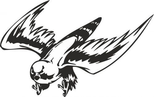 BIRD-PREDATOR-137