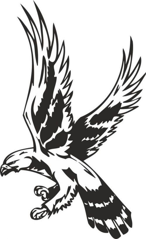 BIRD-PREDATOR-140