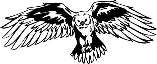 BIRD-PREDATOR-158
