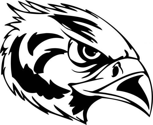 BIRD-PREDATOR-165