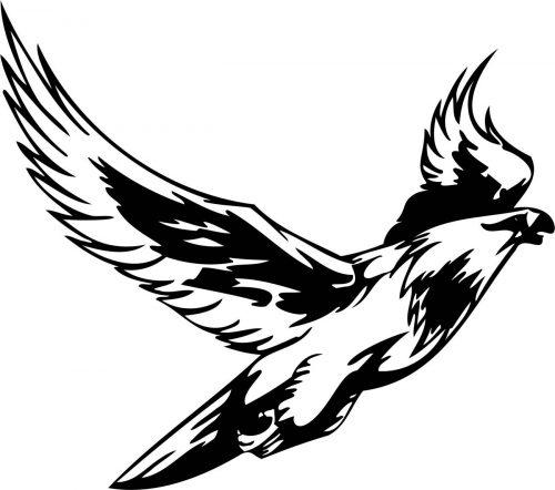 BIRD-PREDATOR-169