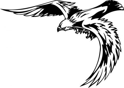 BIRD-PREDATOR-173