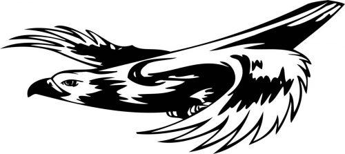 BIRD-PREDATOR-174
