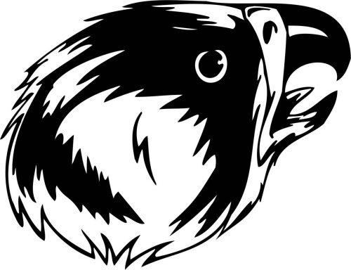BIRD-PREDATOR-176