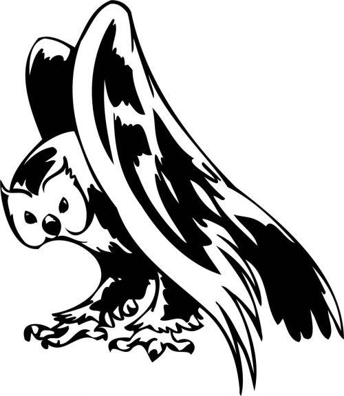 BIRD-PREDATOR-178