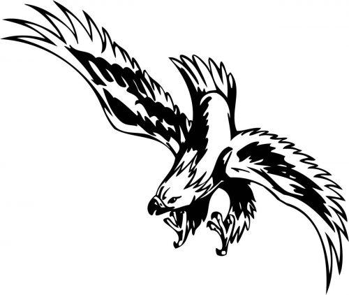BIRD-PREDATOR-179