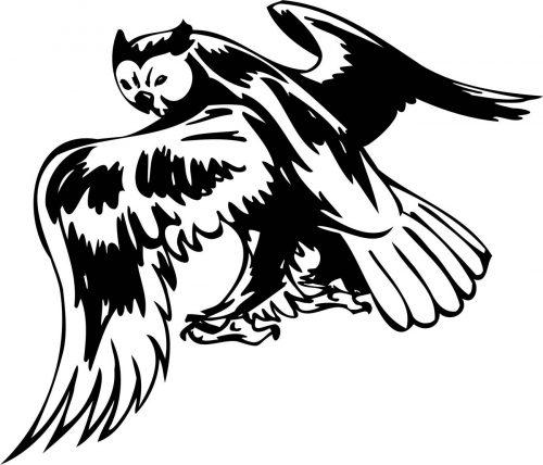 BIRD-PREDATOR-181
