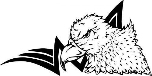 BIRD-026