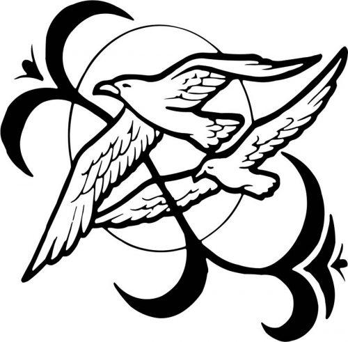BIRD-027
