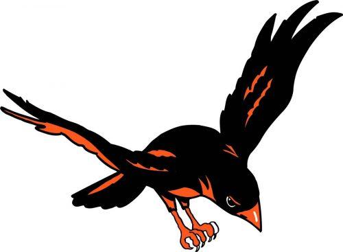 BIRD-032