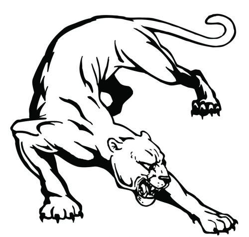 BIG-CAT-112