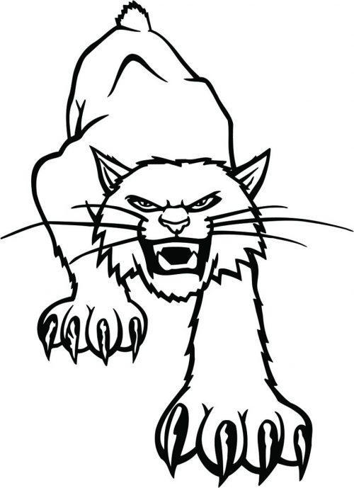 BIG-CAT-117