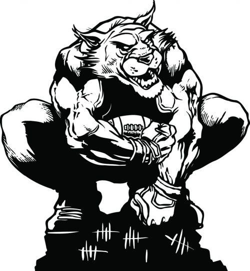 BIG-CAT-153