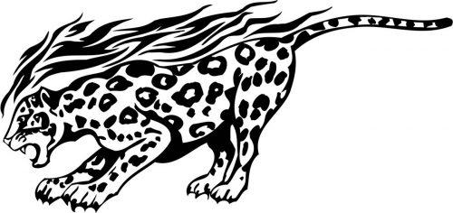 BIG-FLAMING-CAT-063