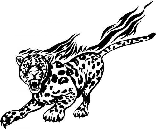 BIG-FLAMING-CAT-064