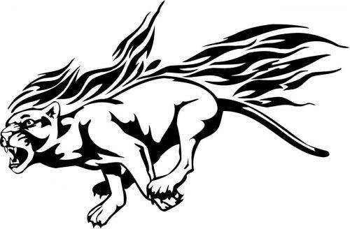 BIG-FLAMING-CAT-069