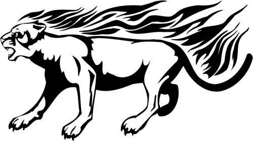 BIG-FLAMING-CAT-070