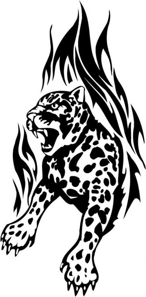 BIG-FLAMING-CAT-076