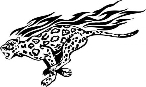 BIG-FLAMING-CAT-077