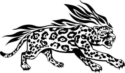 BIG-FLAMING-CAT-078