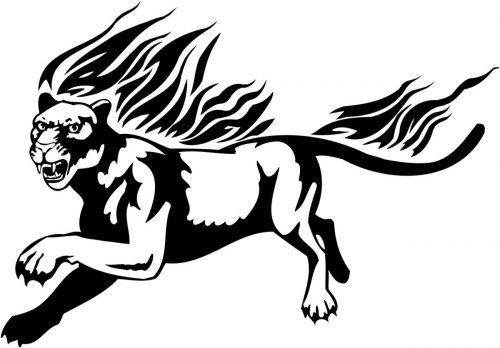 BIG-FLAMING-CAT-082