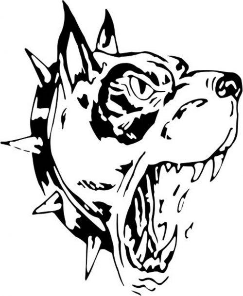 DOG-021