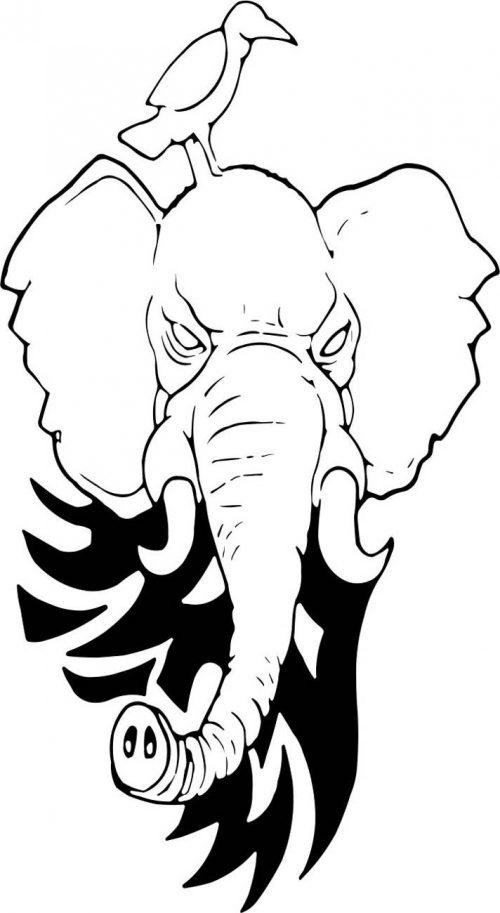 ELEPHANT-002