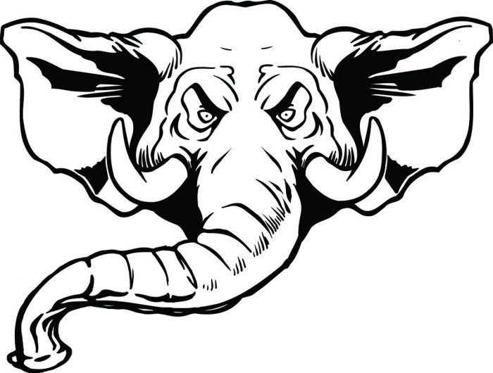 ELEPHANT-006