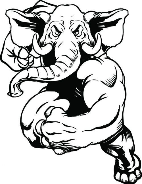 ELEPHANT-009