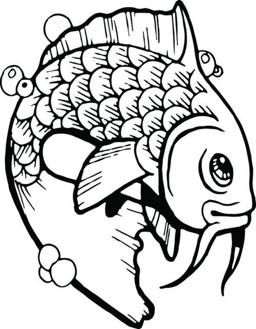 FISH-095