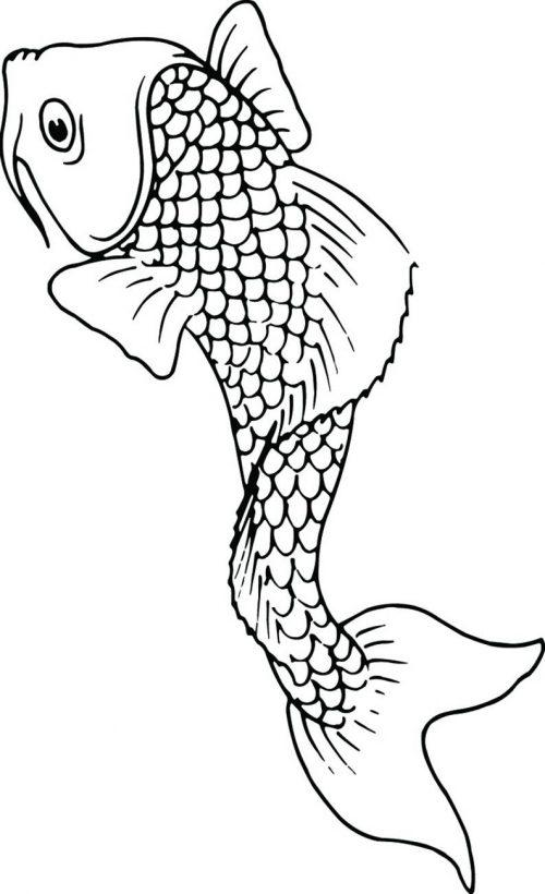 FISH-103
